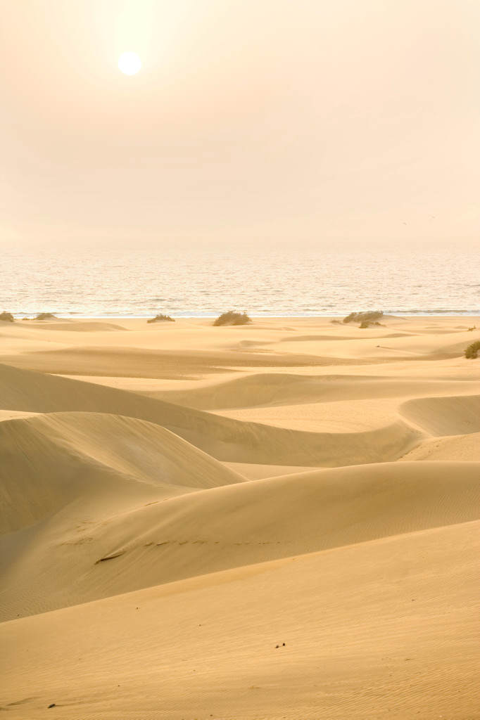 "Canary Islands, Gran Canaria, dunes of Maspalomas and ocean ""RF-Motive_gekauft_SP_120802_Teil I"""